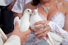 Lancé de colombes